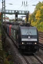 hgk/10884/185-565-und-eine-unbekannte-482 185 565 und eine unbekannte 482 mit DGS 48685 am 07.10.2008 in Offenburg.